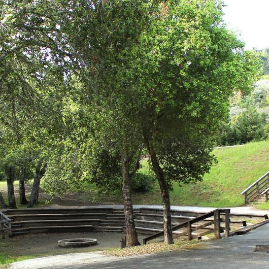 Huddart Park