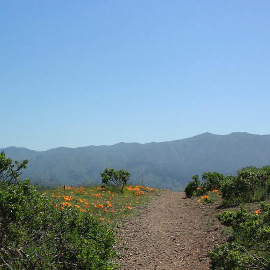 Baquiano Trail