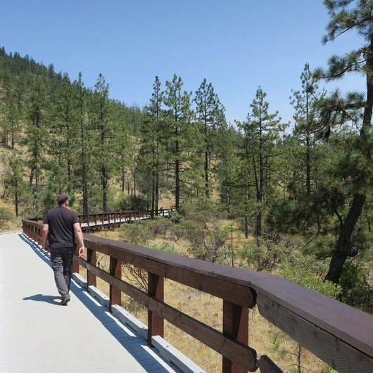 Eight Dollar Mountain Interpretive Boardwalk