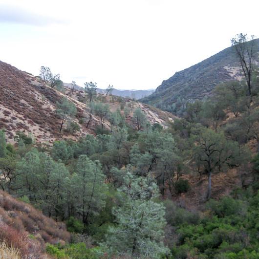 Condor Gulch / High Peaks Trail Loop