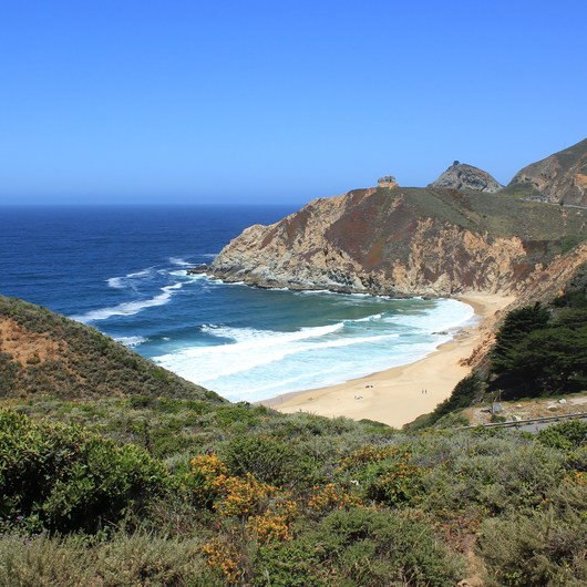 Gray Whale Cove Trail