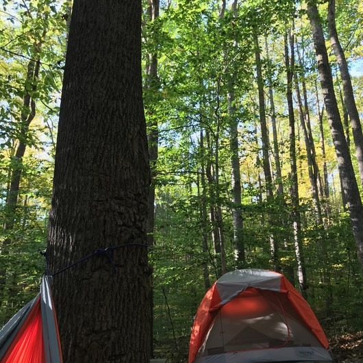 Kentuck Campgrounds