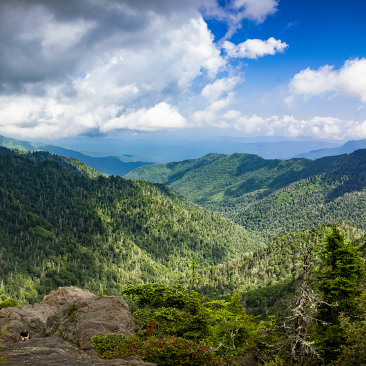 Appalachian Trail: Newfound Gap to Charlie's Bunion