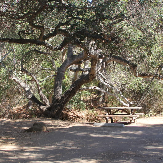 El Capitan State Beach Campground