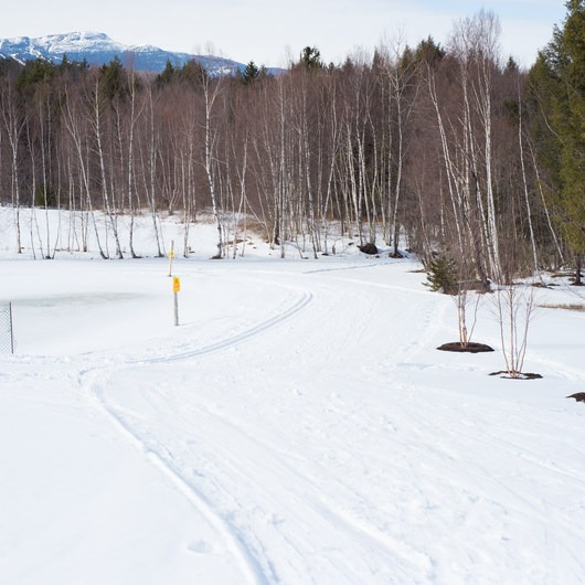 Trapp Family Lodge Cross-country Ski Center