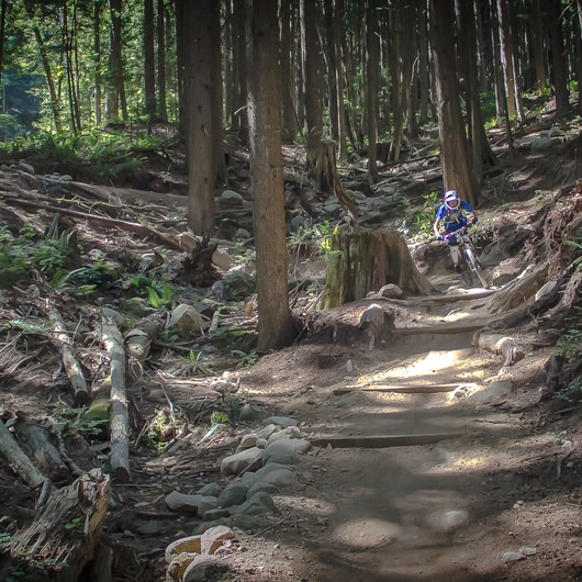Mount Fromme Trails: Lower Fromme Bike Loop