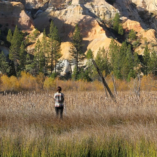 Malakoff Diggins State Historic Park