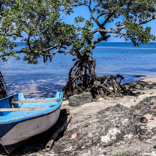 Punta Gorda, Roatan