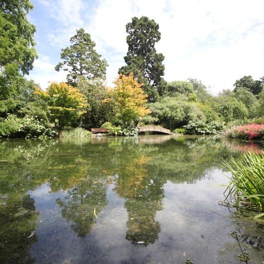 Hagley Park + Botanic Gardens