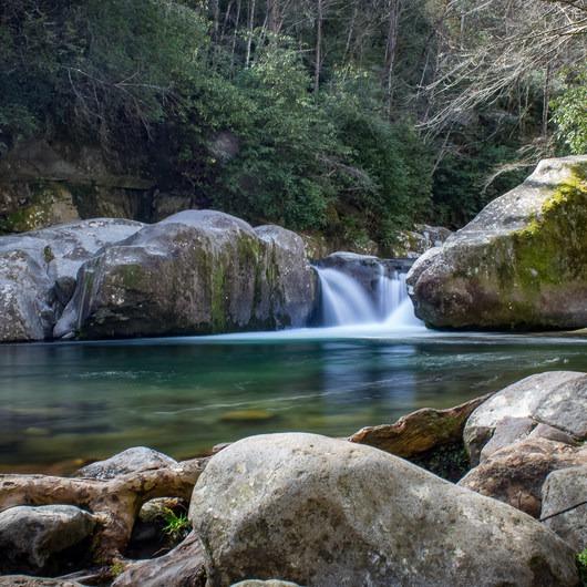 Big Creek Trail to Mouse Creek Falls