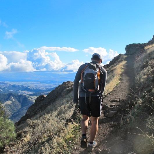 Mount Diablo Hike via Mitchell Canyon Visitor Center