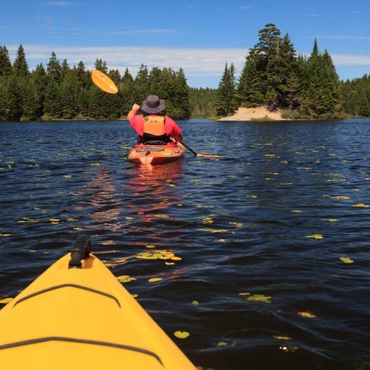 Bennett Lake