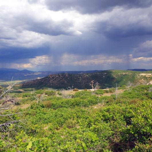 Prater Ridge Trail