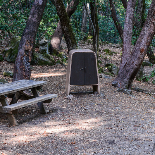 Uvas Canyon County Park Campground