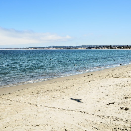 Monterey Municipal Beach