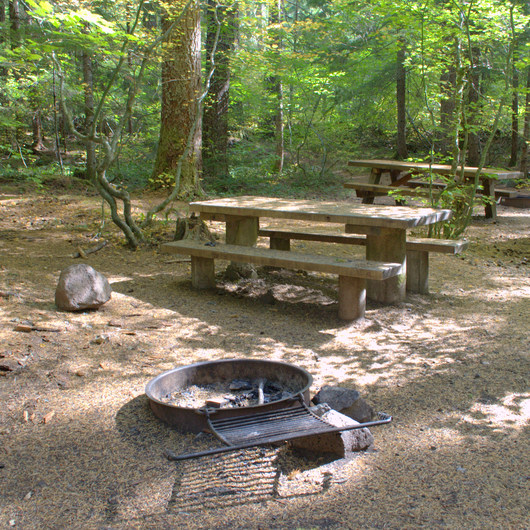 Alder Springs Campground