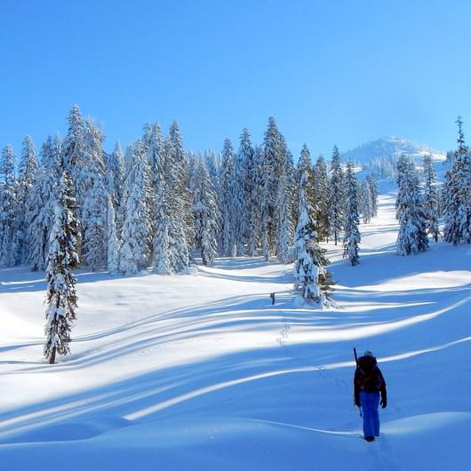 Brown Mountain Snowshoe