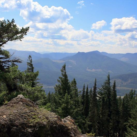 Easton Ridge Trail