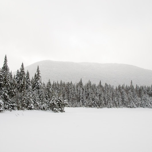 MacNaughton Mountain Snowshoe via the Wallface Ponds