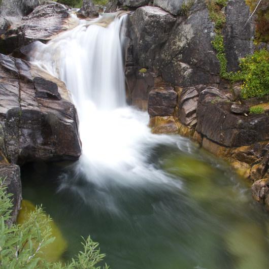 Queens River Trailhead to Queens River Falls + Nanny Creek
