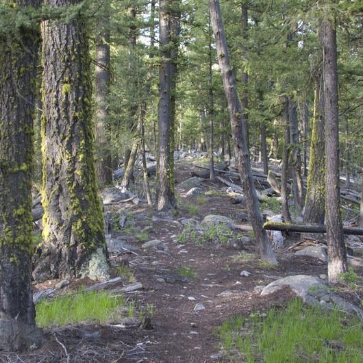 Redfish Lake Loop, Grand Mogul Trail to Bench Lakes