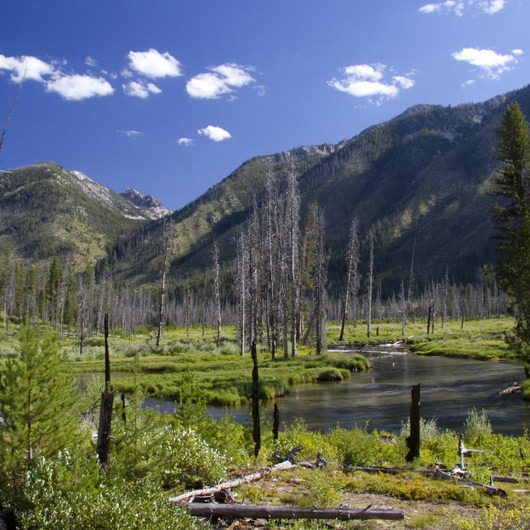 South Fork of the Payette, Grandjean to Taylor Springs