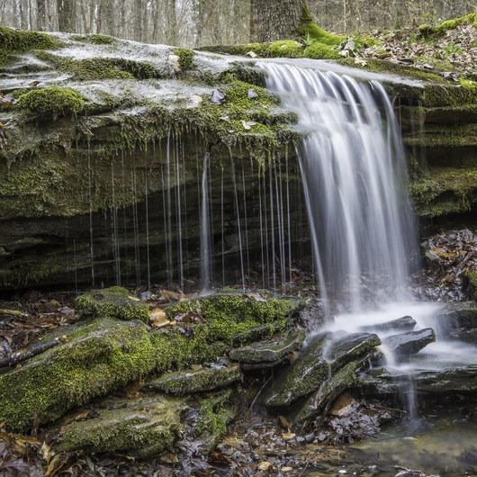 Buffalo Creek + Sal Hollow Loop
