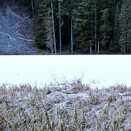 Memaloose Lake
