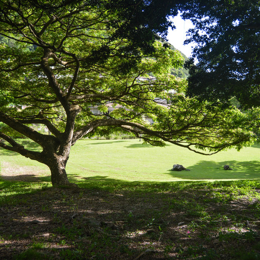 Moanalua Valley Neighborhood Park
