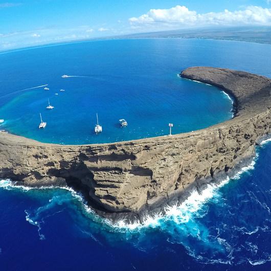 Molokini Crater Snorkeling + Diving Tour