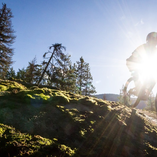 North Whistler Mountain Bike Trails: Out There