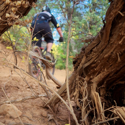Wardsworth Creek Mountain Bike Loop to Dry Fork Canyon