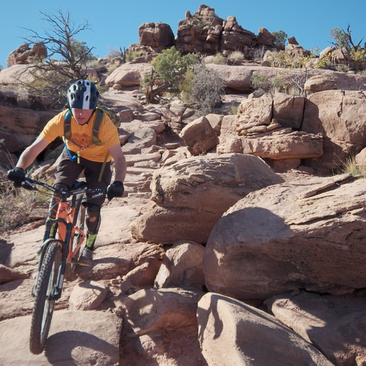 Amasa Back Mountain Bike Trails: Captain Ahab