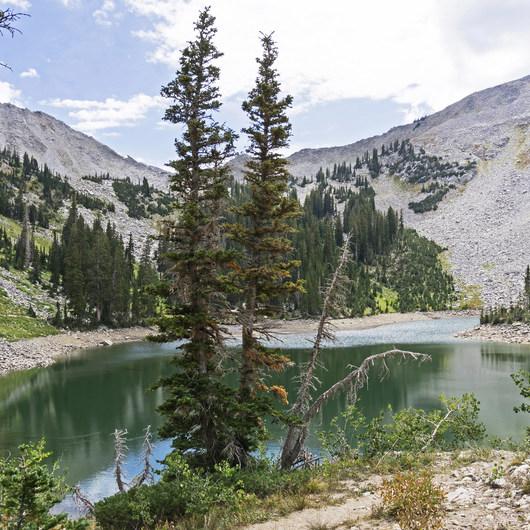 Lower Red Pine Lake Trail