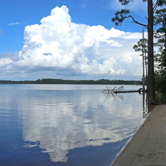 Fred Gannon Rocky Bayou State Park