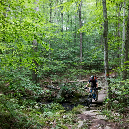 Trout Brook Valley Preserve Mountain Biking