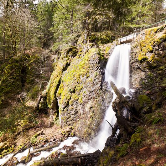 Shellburg Falls Loop Hike
