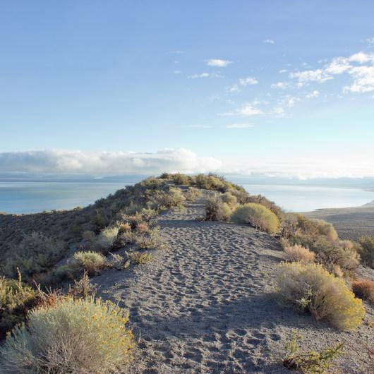 Panum Crater Rim Trail