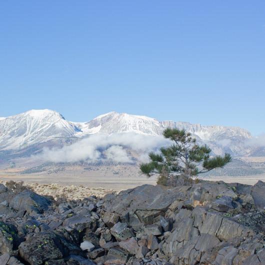Panum Crater Plug Trail