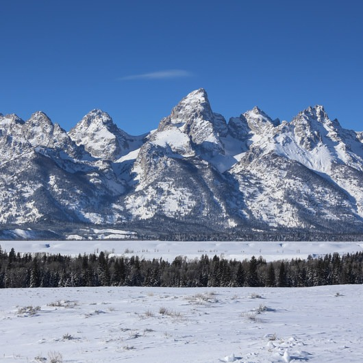 15 National Parks To Visit This Winter