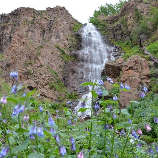 Phoenix Falls Hike