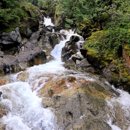 Deception Falls Interpretive Trail