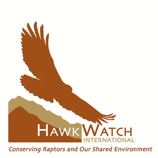 Outdoor Project partners with Hawkwatch International