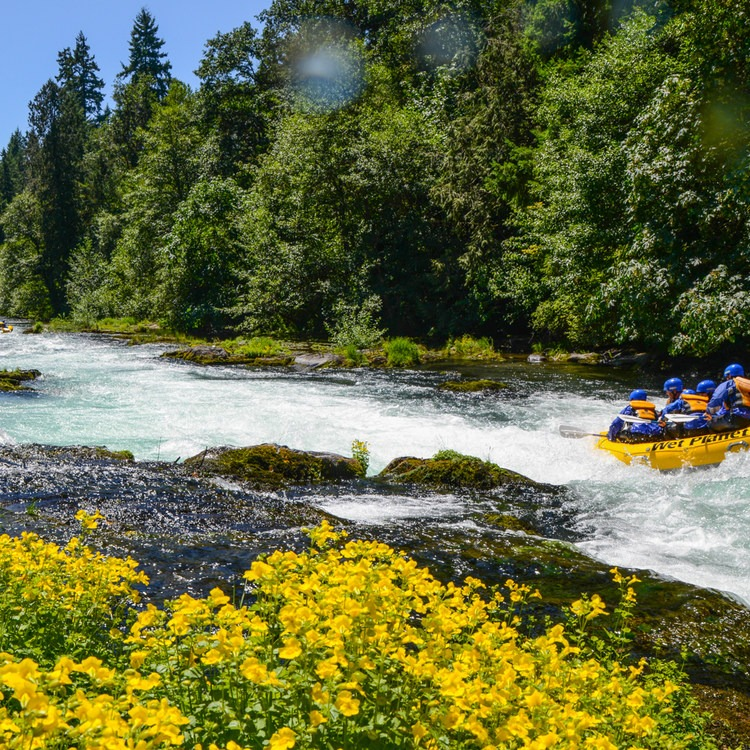 Must-Do Rafting Trips in the West