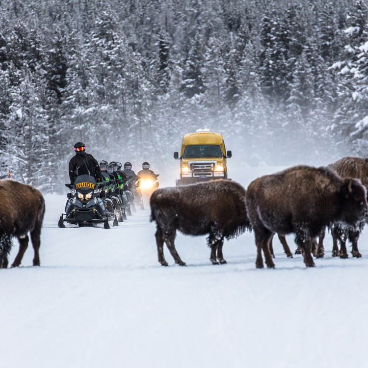 3-Day Winter Adventure Itinerary for West Yellowstone