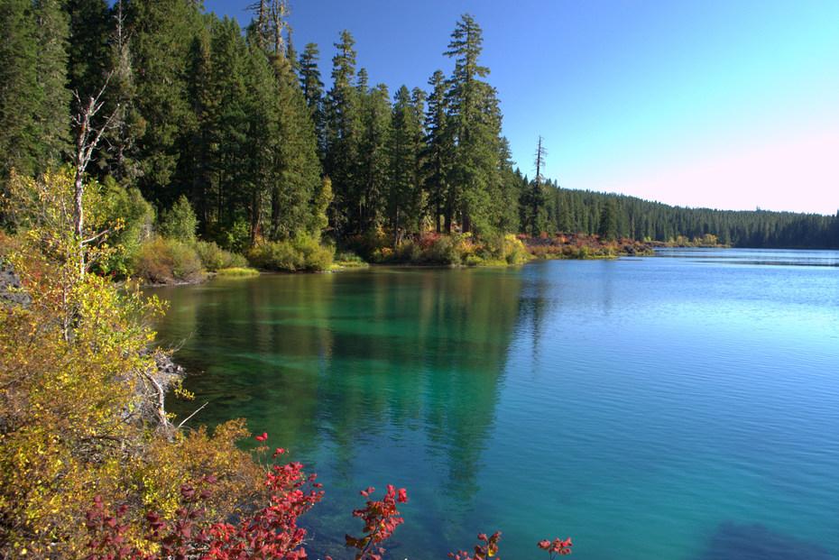 Clear lake trail hiking in oregon for Clear lake oregon fishing