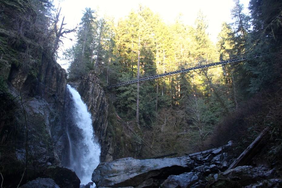 Drift Creek Falls Hike Outdoor Project