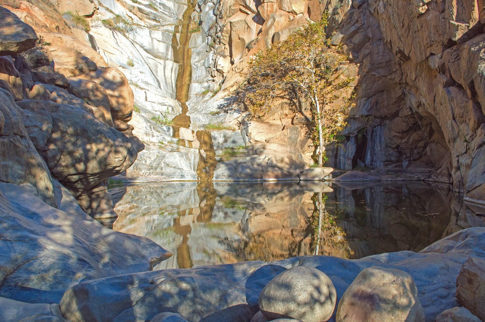 cedar creek falls + devils punchbowl hike via eagle peak road