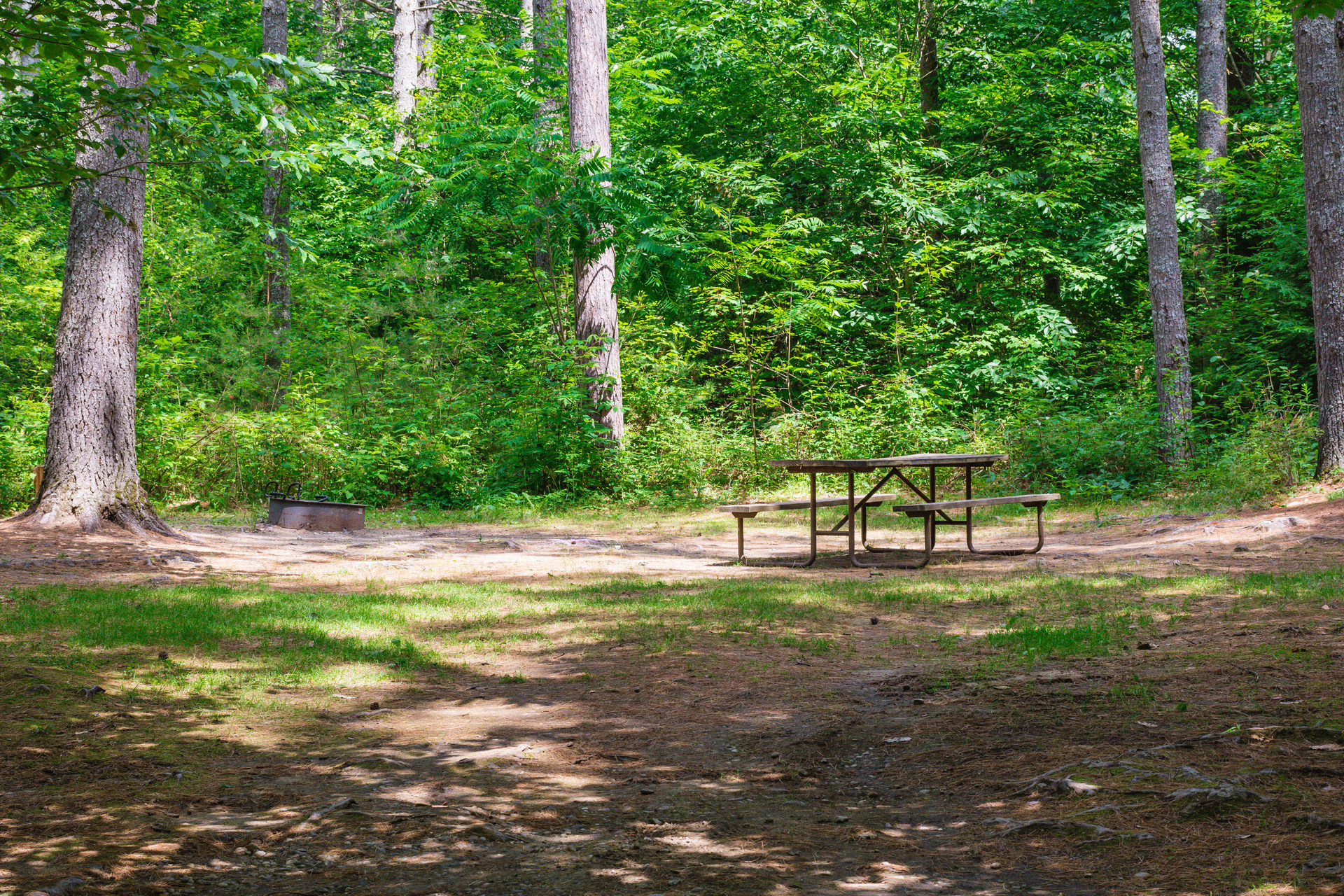 Quechee State Park Campground   Outdoor Project