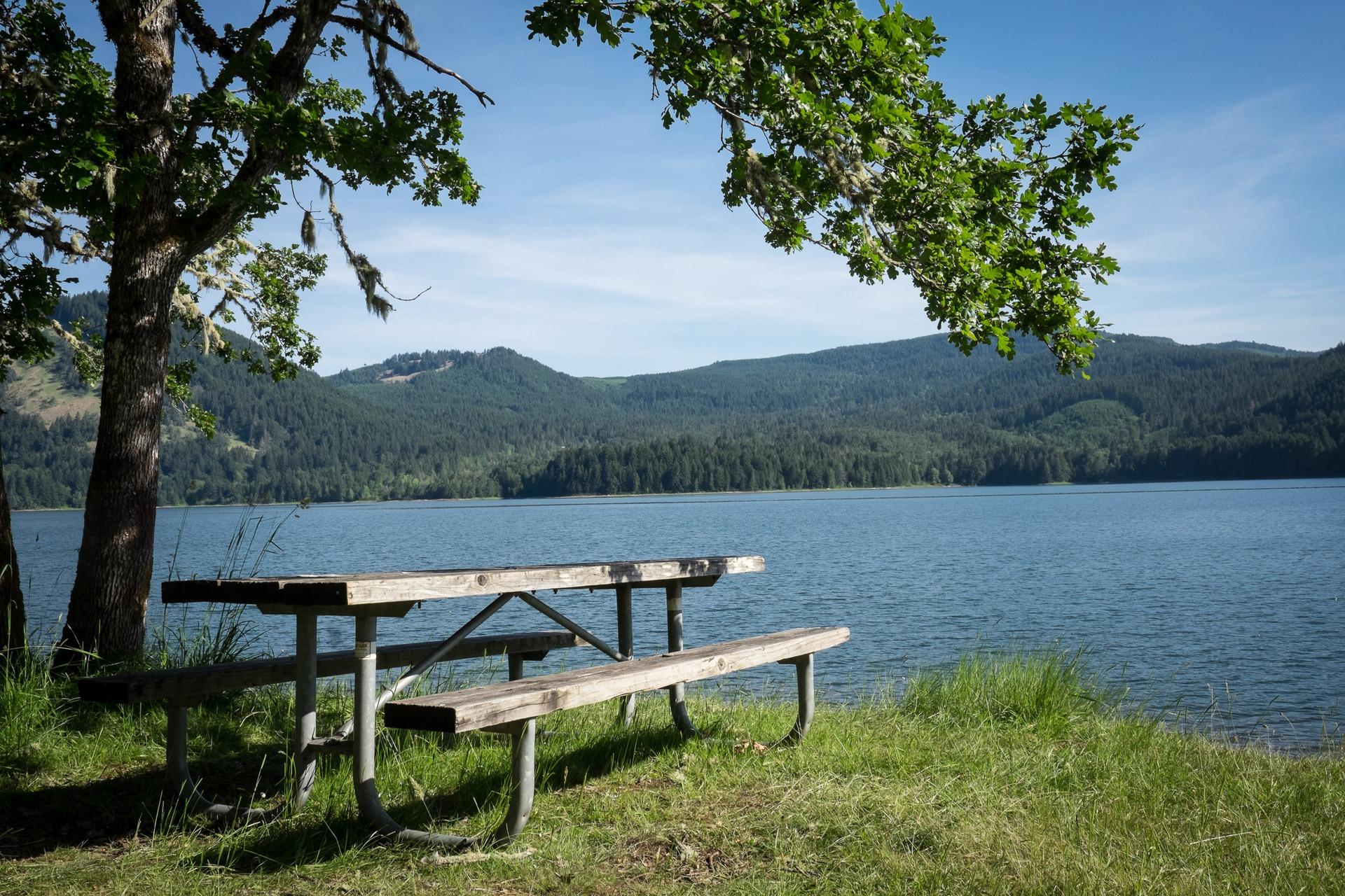 Baker Bay Park Dorena Reservoir Willamette Valley